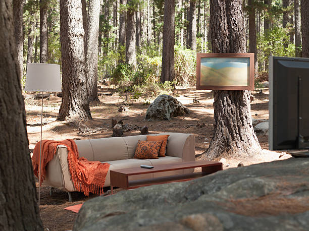 Home furnishings in the middle of the woods:スマホ壁紙(壁紙.com)