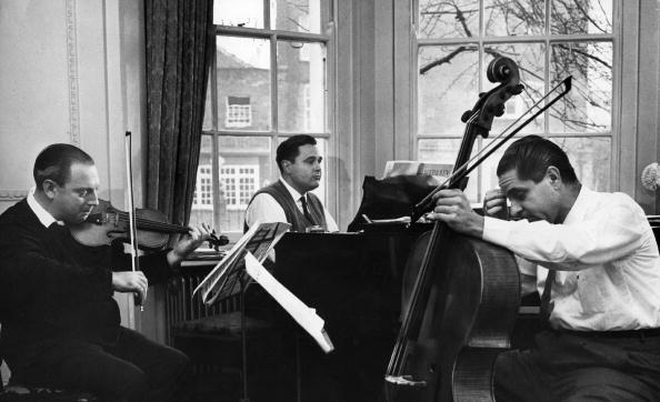 Serious「Beethoven Trio」:写真・画像(12)[壁紙.com]