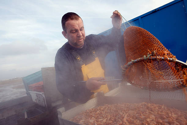 Southport Shrimpers Out At The Beginning Of The Season:ニュース(壁紙.com)