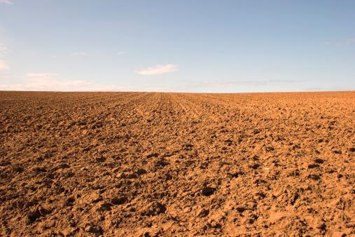 Land「Empty muddy field of red soil」:スマホ壁紙(0)