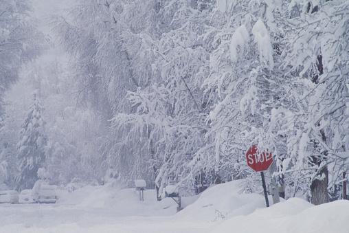 Snowdrift「Stop Sign on a Snow Covered Street」:スマホ壁紙(1)