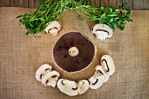 Tarragon「Mushrooms in the form of a happy face」:スマホ壁紙(19)