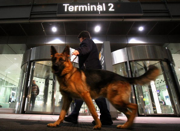 Sniff Dog「Safety Alarm At Munich Airport」:写真・画像(2)[壁紙.com]