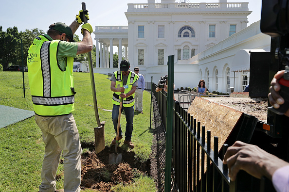 Outdoors「Sinkhole Open Up Near West Wing Of White House」:写真・画像(1)[壁紙.com]
