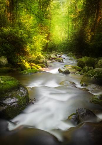 Roaring Fork River「Deep Dark Woods」:スマホ壁紙(3)