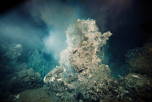 1980-1989「Murky Water Around Hydrothermal Vent」:スマホ壁紙(11)