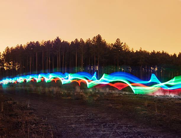 Tri-colour light trail in heath.:スマホ壁紙(壁紙.com)