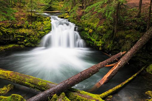 Empty「USA, Douglas County, Oregon, Umpqua River, Whitehorse Falls」:スマホ壁紙(1)