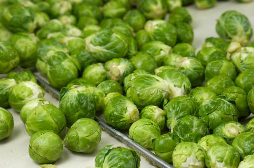 Belt「Harvested Brussels Sprouts on conveyor Belt」:スマホ壁紙(14)