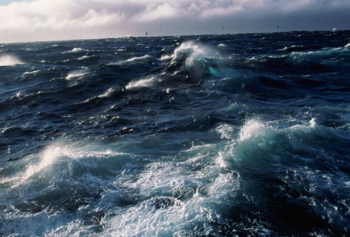 Seagull「Bering Sea, Winter seas whipped by 90 knot winds」:スマホ壁紙(1)