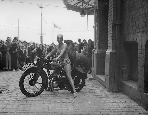 Blackpool「Motorcycling Seal」:写真・画像(17)[壁紙.com]