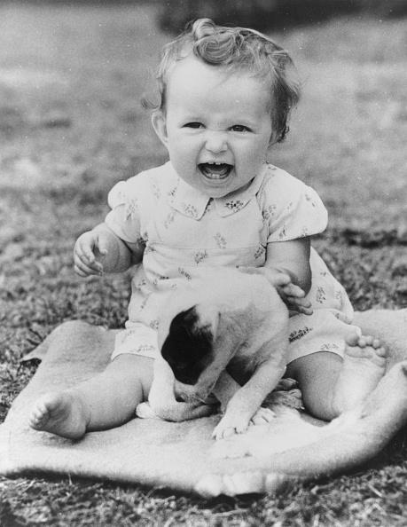 Laughing「Puppy Fun」:写真・画像(15)[壁紙.com]