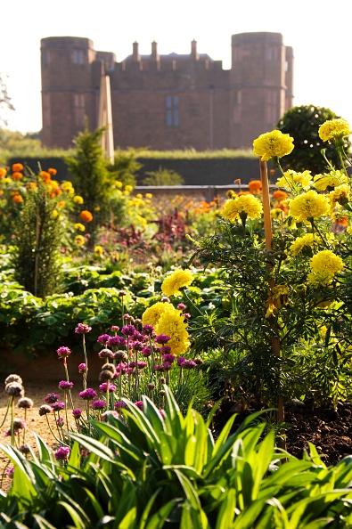Elizabethan Style「Elizabethan garden, Kenilworth Castle, Warwickshire, 2008」:写真・画像(13)[壁紙.com]