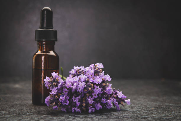 A bottle of lavender essential oil with fresh lavender twigs:スマホ壁紙(壁紙.com)