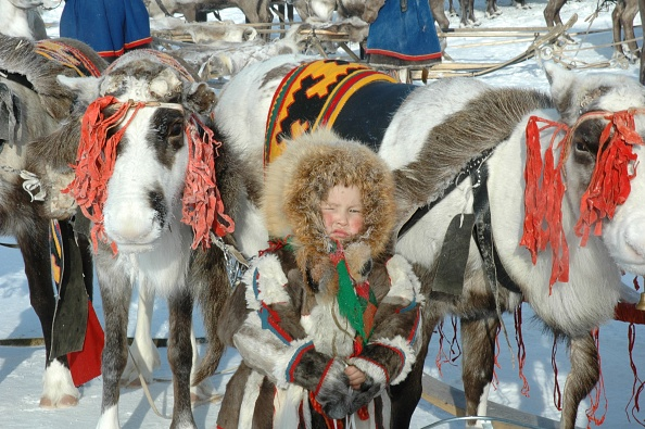 Tradition「The Nenets - nomad tribes from Siberia」:写真・画像(6)[壁紙.com]