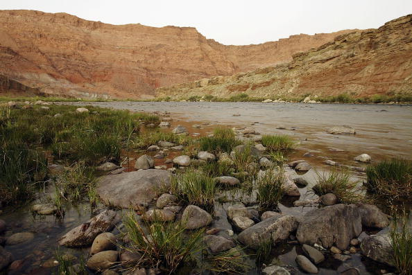Arizona「Five-year Drought Threatens Colorado River States' Water and Power」:写真・画像(1)[壁紙.com]
