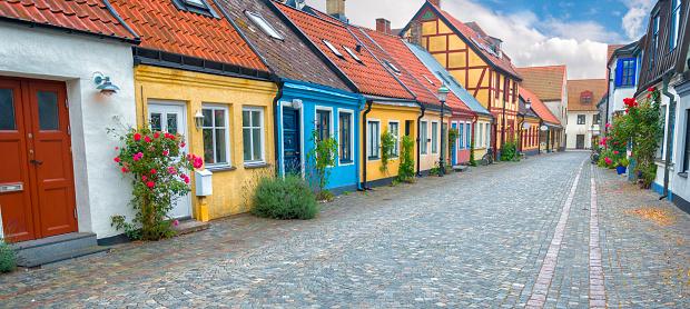 薔薇「Old Swedish street」:スマホ壁紙(1)