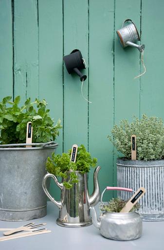 Gardening Equipment「Potted herbs in various vessels」:スマホ壁紙(15)