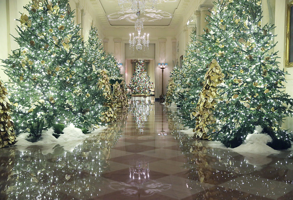 Holiday - Event「The White House Previews Decor For The Holiday Season」:写真・画像(1)[壁紙.com]