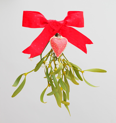 宿り木「Christmas decoration with sprig of mistletoe」:スマホ壁紙(11)