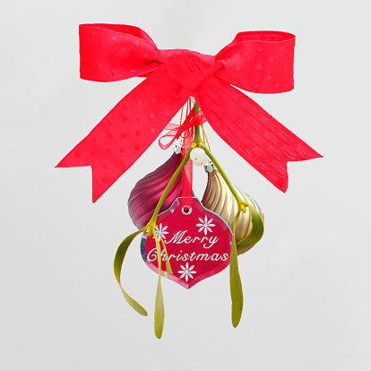 宿り木「Christmas decoration with sprig of mistletoe」:スマホ壁紙(5)