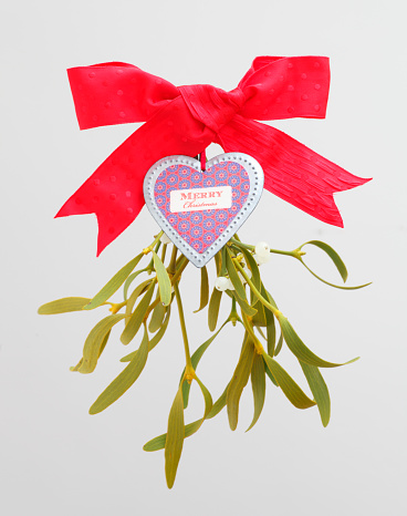 宿り木「Christmas decoration with sprig of mistletoe」:スマホ壁紙(4)