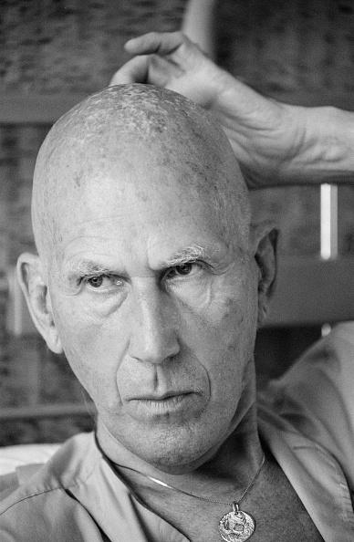 Completely Bald「Teddy Tingling」:写真・画像(16)[壁紙.com]