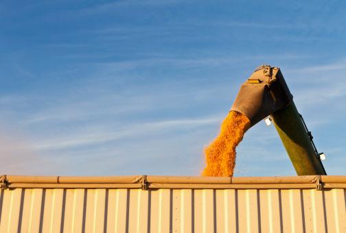 Iowa「USA, Iowa, Latimer, Combine harvester harvesting corn」:スマホ壁紙(18)