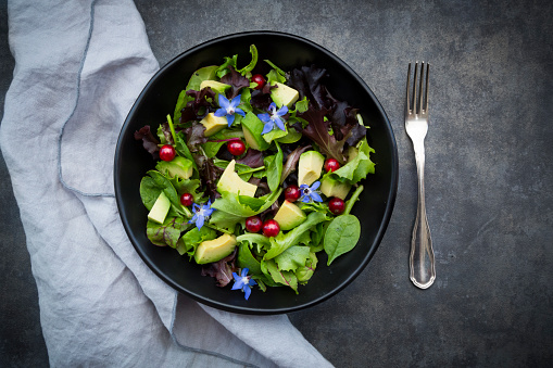 Salad「Bowl of mixed salad with avocado, red currants and borage blossoms」:スマホ壁紙(14)