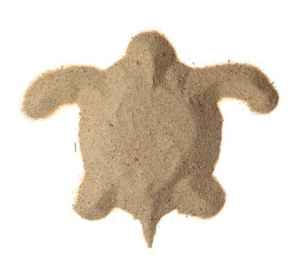 Green Turtle「Turtle made of sand」:スマホ壁紙(15)