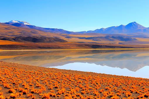 綺麗「ラグナ Tuyacto - 湖 Tuyacto と Miniques 雪を頂いた山 - 青緑色の湖塩ミラー反射と牧歌的なアタカマ砂漠、火山の風景パノラマ-サン ペドロ デ アタカマ、チリ、Bolívia、アルゼンチン国境」:スマホ壁紙(12)