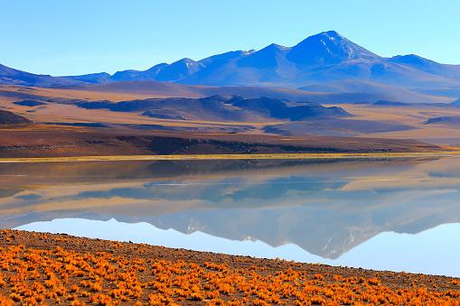 綺麗「ラグナ Tuyacto - 湖 Tuyacto と Miniques 雪を頂いた山 - 青緑色の湖塩ミラー反射と牧歌的なアタカマ砂漠、火山の風景パノラマ-サン ペドロ デ アタカマ、チリ、Bolívia、アルゼンチン国境」:スマホ壁紙(11)