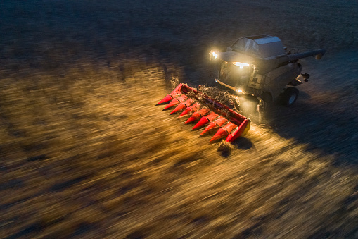 Planting「Harvest season. Aerial View of a Combine Harvester gathering the corn crop in the Agricultiral Field After Sunset in Autumn. Agricultural Equipment in Cultivated Land. Nighttime. Working Late.」:スマホ壁紙(16)