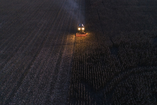 Planting「Harvest season. Aerial View of a Combine Harvester gathering the corn crop in the Agricultiral Field After Sunset in Autumn. Agricultural Equipment in Cultivated Land.」:スマホ壁紙(13)