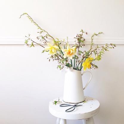水仙「spring flowers in a jug with scissors, daffodil, twisted willow and blossom」:スマホ壁紙(11)