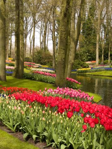 Garden Of Eden - Old Testament「Spring Flower Garden」:スマホ壁紙(17)
