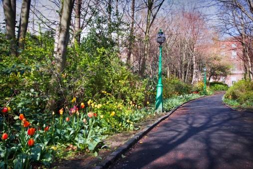 Formal Garden「Spring flowers lining a formal driveway」:スマホ壁紙(19)