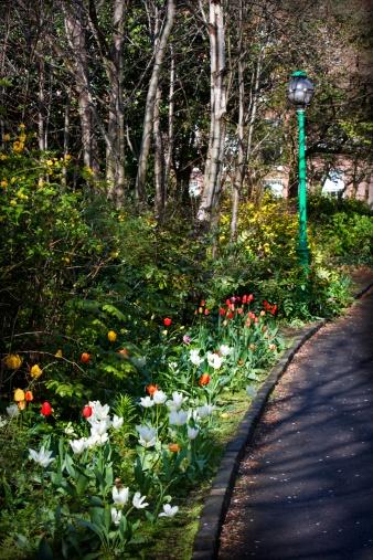 Formal Garden「Spring flowers lining a formal driveway」:スマホ壁紙(18)
