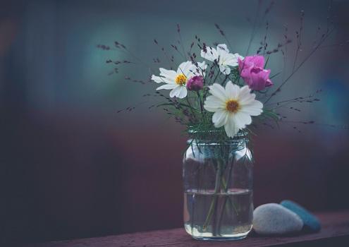 コスモス「花の浸漬。ガラスの瓶にコスモスの花のシンプルな花束」:スマホ壁紙(16)