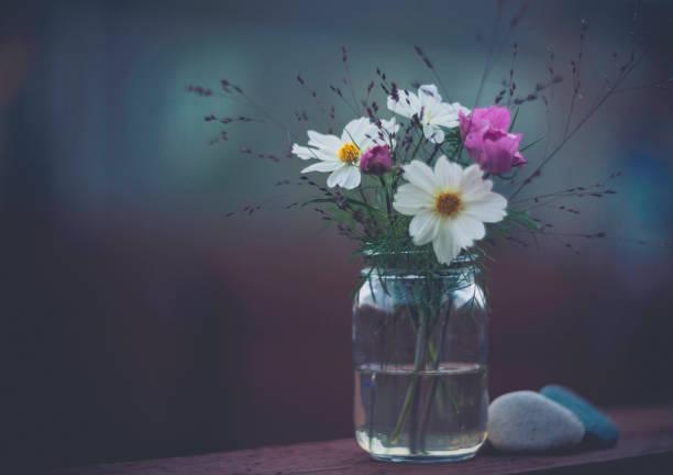 花の浸漬。ガラスの瓶にコスモスの花のシンプルな花束:スマホ壁紙(壁紙.com)