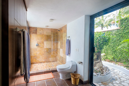 Nayarit「Toilet and shower in a residential home」:スマホ壁紙(19)