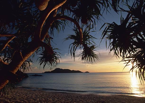 海の癒しのまとめ:2007年01月05日(壁紙.com)