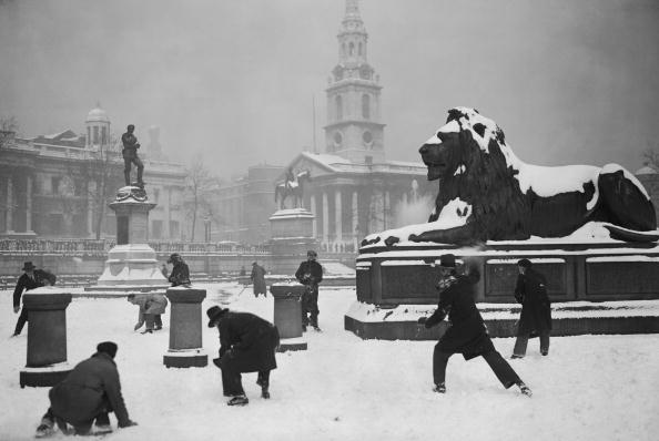 雪「Trafalgar Snowballs」:写真・画像(17)[壁紙.com]