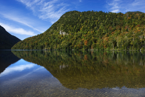 Adirondack Mountains「Forest reflecting in river」:スマホ壁紙(1)