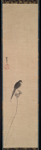 Bud「Bird On A Lotus Bud」:写真・画像(7)[壁紙.com]