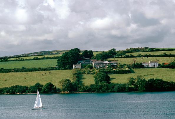 Tim Graham「Helford River, Cornwall, UK」:写真・画像(19)[壁紙.com]
