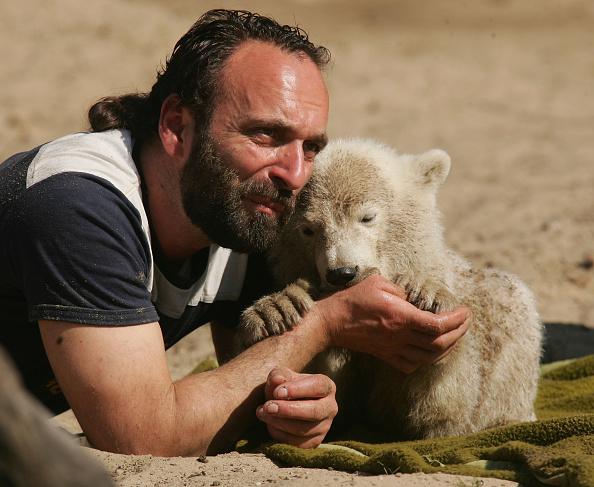 Bear Cub「Knut Mania Continues」:写真・画像(17)[壁紙.com]