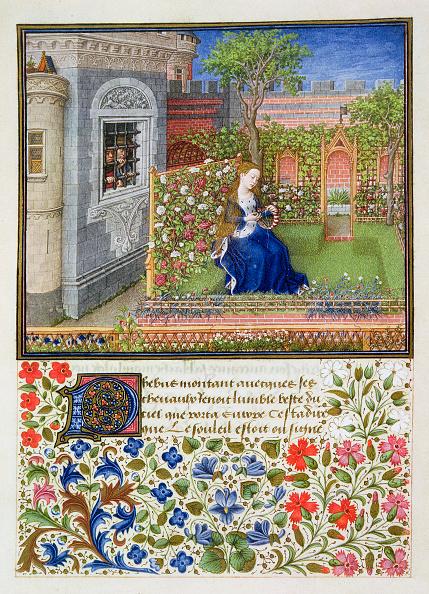 Literature「Emilia In Her Garden 1468」:写真・画像(6)[壁紙.com]
