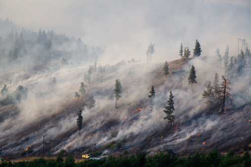 Smoke - Physical Structure「Montana Forest Fire 2007 [ 2 Millionth iStock file ]」:スマホ壁紙(5)