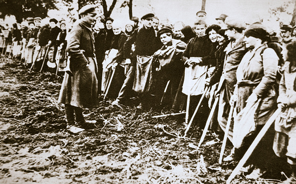 Thin「Townsfolk Wait To Scour The Fields For Potatoes Left By Farmers Germany World War I circa 1914-circa 1918」:写真・画像(9)[壁紙.com]